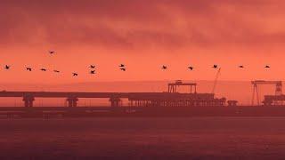 Керченский пролив: к стрельбе привели споры о правовом статусе моря…