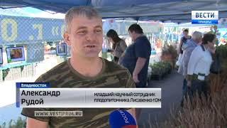 Выставка саженцев омского плодопитомника им. Лисавенко прибыла во Владивосток
