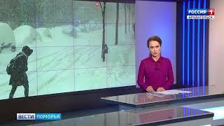 Архангельск накрыла метель
