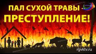 МЧС предупреждает: из-за сухой и ветреной погоды в Дагестане участились пожары
