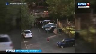 Огромный табун лошадей разгуливает по Кисловодску