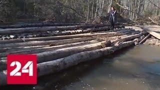 Подтопило, но не затопило: в Новгородской области восстанавливают дороги - Россия 24