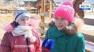 Ипподром может появиться в поселке Кавалерово