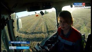«Вести» познакомились с единственной в Новосибирской области девушкой-трактористом
