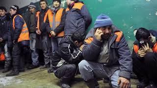 как выживают мигранты в России