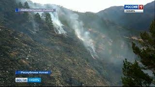 В регионах Сибири горят леса