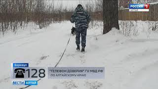 В Барнауле полиция раскрыла нападение на девушку