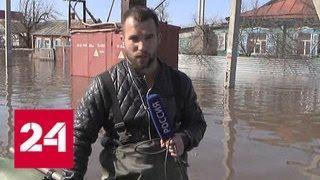 Паводок в Волгоградской области: большая вода постепенно отступает - Россия 24
