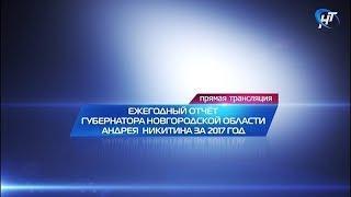 Ежегодный отчёт Губернатора Новгородской области за 2017 г.