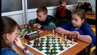 Детские шахматные соревнования возобновились в Благовещенске