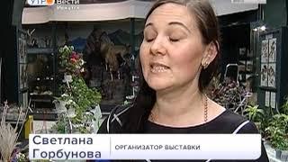 Более тысячи комнатных растений представили селекционеры на выставке в Иркутске