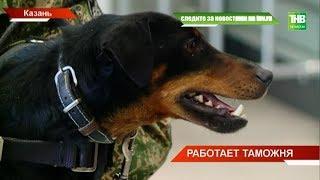 Сегодня работу таможни казанского аэропорта увидели журналисты - ТНВ