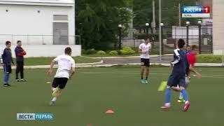 В Пермском крае откроется Академия игровых видов спорта