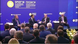 Путин и Макрон на Петербургском экономическом форуме