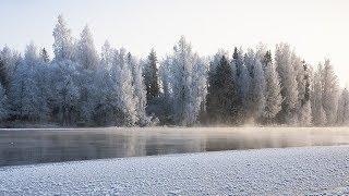 Зима пришла: реки Югры покрываются льдом