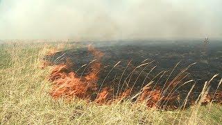 С пожаром в пензенской Заре боролись около 30 спасателей