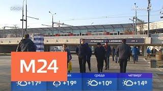 По-весеннему теплая погода ожидается в воскресенье - Москва 24