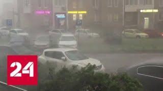 Москва оказалась в хвосте уходящего циклона - Россия 24