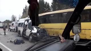 В Тверской области столкнулись автобус и маршрутное такси: погибло 12 человек