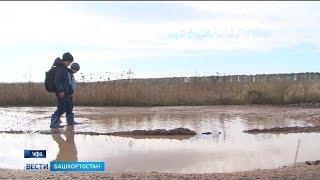 В Башкирии сельские школьники добираются до школы через болото: репортаж «Вестей»