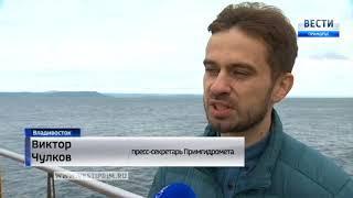 Во Владивостоке стартовал купальный сезон, когда придет летнее тепло