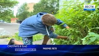 """""""Вести: Приморье"""": Во Владивостоке начали работу первые школьные ремонтные бригады"""