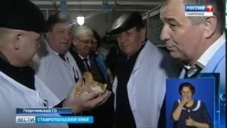 Ставропольские птичники ждут субсидий