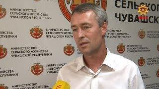 Несчастный случай произошел в деревне Кивьял Вурнарского района.