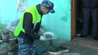 Наркокулинара застали за изготовлением зелья полицейские ЕАО(РИА Биробиджа)