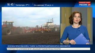 Как проходит посевная кампания в Новосибирской области?