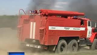 МЧС: на Дону резко возросло количество лесных пожаров
