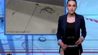 """Новый выпуск """"ГлазНародаЕАО"""" увидели зрители НТК21 в ЕАО(РИА Биробиджан)("""