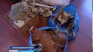 Стали известны имена членов экипажа Ил-2, фрагменты которого нашли в Багратионовском районе