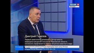 РОССИЯ 24 ИВАНОВО ВЕСТИ ИНТЕРВЬЮ ГОРЕЛОВ Д В