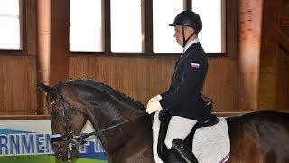 На коне: в Ханты-Мансийске продолжаются соревнования по конкуру