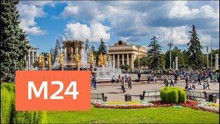 """""""Утро"""": потепление ожидается в столичном регионе 31 июля - Москва 24"""