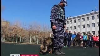 Кинологи рассказали иркутским школьникам, как вести себя при нападении собак