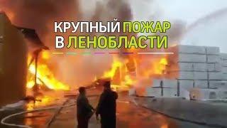 В Ленобласти произошел крупный пожар