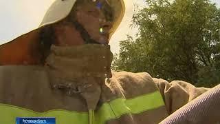 На Дону сохраняется чрезвычайный уровень пожарной опасности