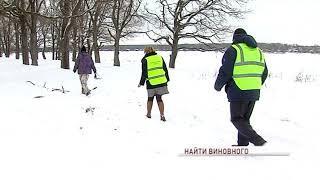 Спасение дубравы продолжается: эксперты выяснят причины гибели дубов в Михайловском