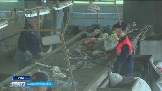 Башкирия переходит на раздельный сбор мусора