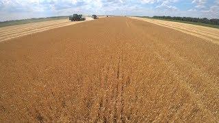 Волгоградские аграрии намолотили 3 миллиона тонн зерна
