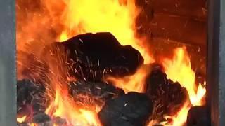 """20-летний юбилей отметило МУП """"ГТС"""" Биробиджана(РИА Биробиджан)"""