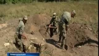 Поисковики нашли останки 150 бойцов, погибших в годы Великой Отечественной войны