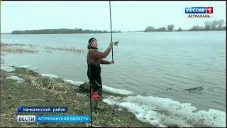 Астраханская весна у рыбаков ассоциируется, прежде всего, с воблой