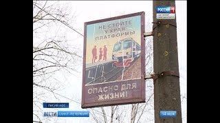 Вести Санкт-Петербург. Выпуск 20:45 от 14.11.2018