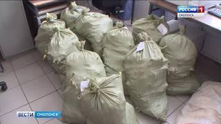 Смоленские полицейские изъяли 160 кустов конопли с незаконной плантации