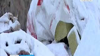 Жители правобережья обнаружили на улице Саянской незаконную свалку