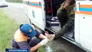 Спасатели нашли грибников