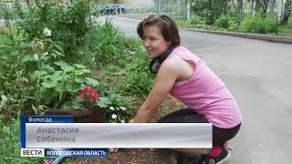 Более 700 рабочих мест для подростков создано в Вологде